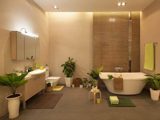 Cây xanh được trang trí trong cho phòng tắm đẹp