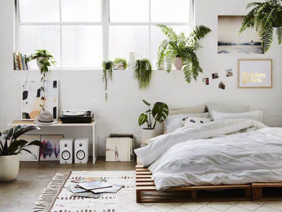 Sử dụng các cây, hoa cho không gian phòng ngủ thêm gần gũi