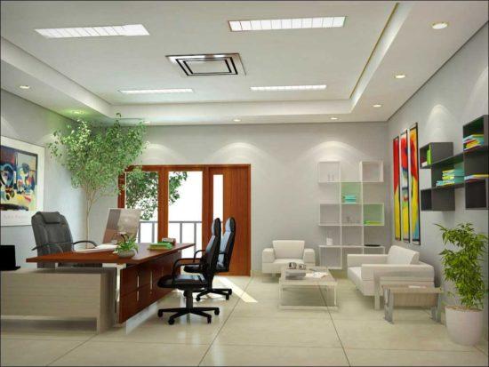 Trang trí văn phòng bằng cây xanh